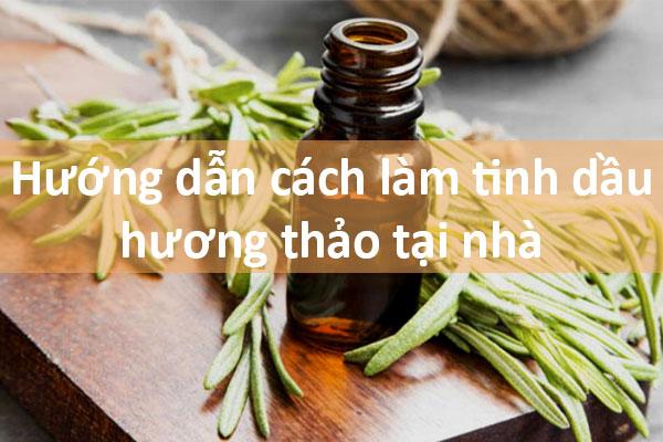 Cách làm tinh dầu hương thảo tại nhà