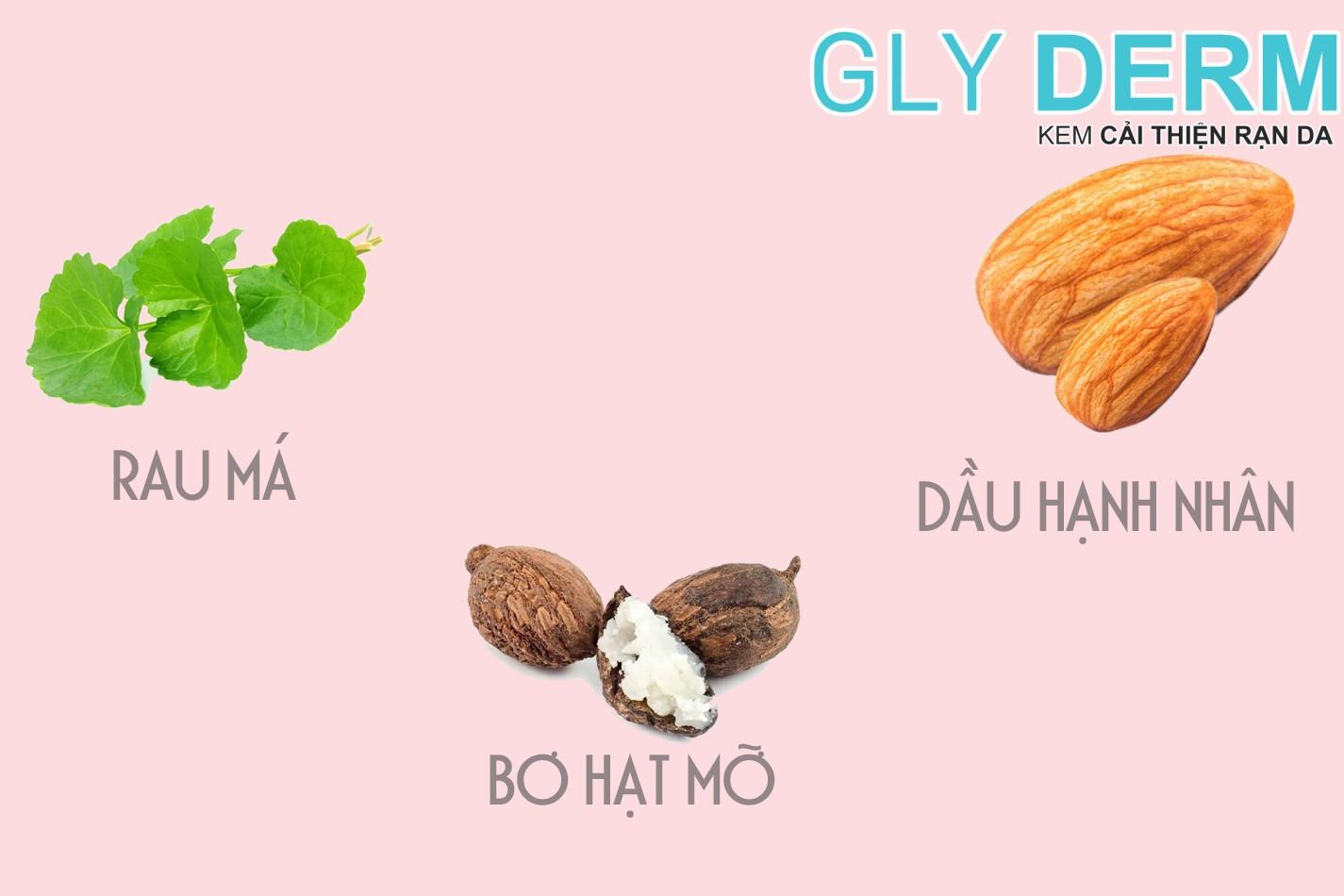 Thành phần kem Gly Derm