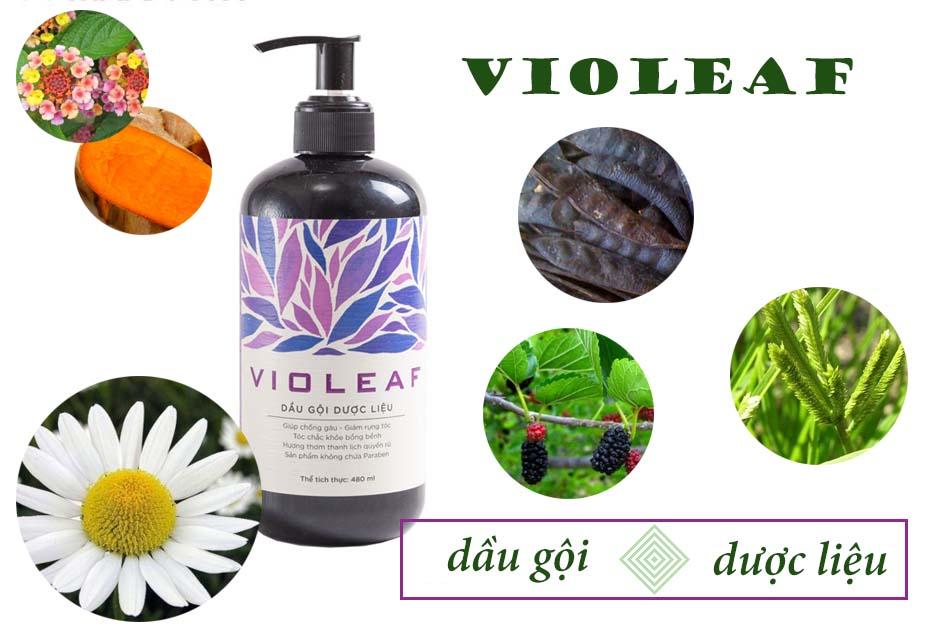 Thành phần dầu gội Violeaf