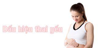 Dấu hiệu thai yếu trong 3 tháng đầu và 3 tháng cuối